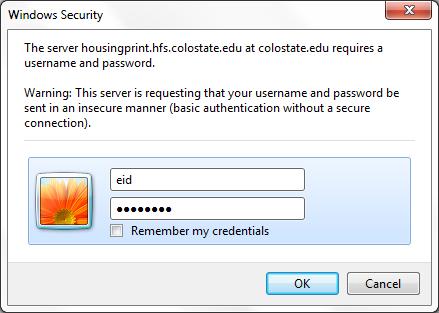 Web Installation windows security screenshot