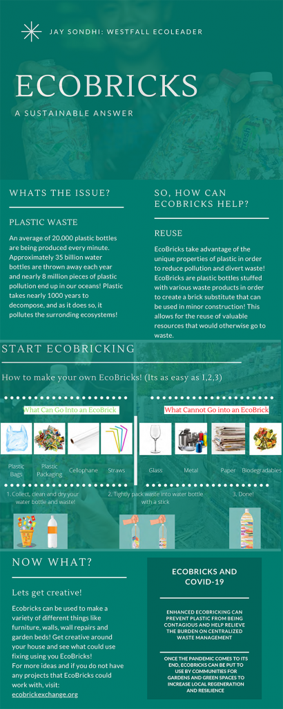EcoBricks Infographic